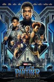 Black Panther (2018) Hindi Dubbed
