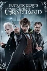 Fantastic Beasts The Crimes of Grindelwald (2018) Hindi Dubbed