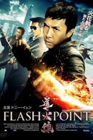 Flash Point (2007) Hindi Dubbed