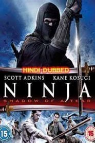 Ninja Shadow of a Tear (2013) Hindi Dubbed