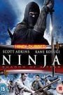 Ninja Shadow of a Tear (2013) Hindi Dubbed