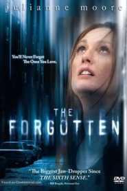 The Forgotten (2004) Hindi Dubbed