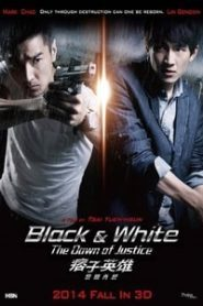 Black And White The Dawn of Justice (2014) Hindi Dubbed