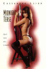 Midnight Tease (1994)