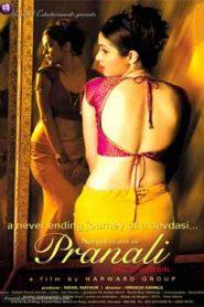 Pranali The Tradition (2008) Hindi