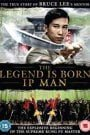 The Legend Is Born Ip Man (2010) Hindi Dubbed