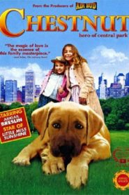 Chestnut Hero of Central Park (2004) Hindi Dubbed