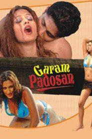 Garam Padosan (2006) Hindi