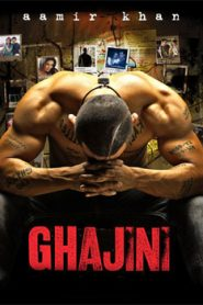 Ghajini (2008) Hindi