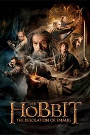 The Hobbit The Desolation of Smaug (2013) Hindi Dubbed