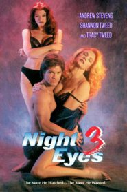Night Eyes Three (1993)