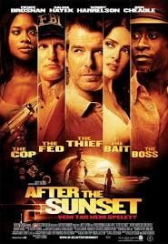 After the Sunset (2004) Hindi Dubbed