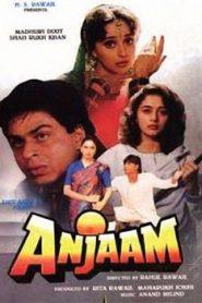 Anjaam (1994) Hindi