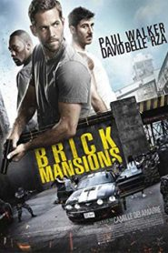 Brick Mansions (2014) Hindi Dubbed