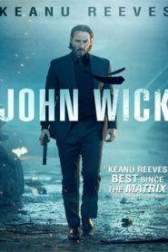 John Wick (2014) Hindi Dubbed