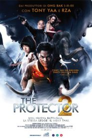 The Protector 2 (2013) Hindi Dubbed