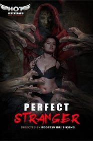 Perfect Stranger (2019) Hindi Hotshot