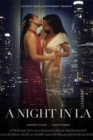 Night in LA (2019) HotShots Hindi