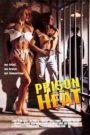 Prison Heat (1993) Hindi Dubbed