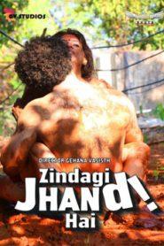 Zindagi Jhand Hai (2020) Hindi Hotshot