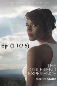 The Girlfriend Experience (2016) Hindi Dubbed Season 1 [EP 1-6]
