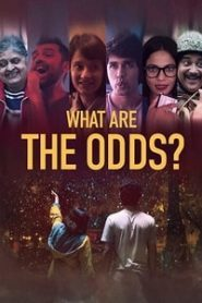 What are the Odds (2020) Hindi