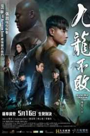 The Invincible Dragon (2019) Hindi Dubbed