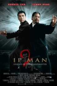 Ip Man 2 (2010) Hindi Dubbed