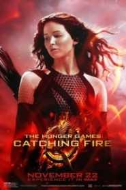 The Hunger Games Catching Fire (2013) Hindi Dubbed