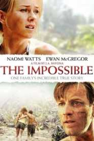 The Impossible (2012) Hindi Dubbed