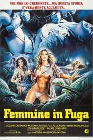 Femmine in fuga (Women in Fury) 1984