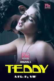 Teddy Flizmovies (2020) Hindi