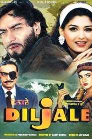 Diljale (1996) Hindi