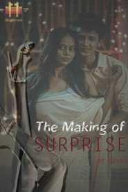 Surprise (2020) 11UpMovies