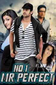 Mr Perfect (2011) South Hindi Dubbed