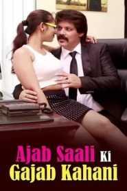 Ajab Saali Ki Gajab Kahani (2014) Hindi