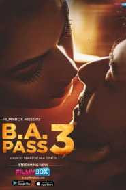 B A Pass 3 2021 Hindi