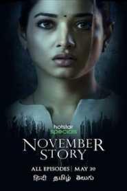 November Story (2021) Hindi Season 1