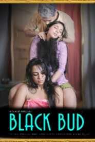 Black Bud 2021 Hindi