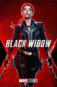 Black Widow (2021) Hindi Dubbed